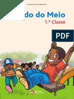 ESTUDO DO MEIO  (ACTUALIZADO 2019)