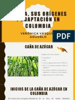 Unidad 3 Panela, Orígenes y Adaptación - Verónica Vásquez