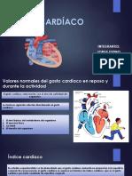 2 Parcial Gasto Cardíaco