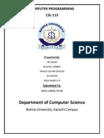 Computer Programming Report