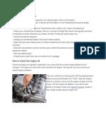 Car Maintenance Basics