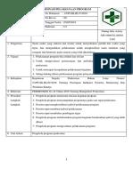 9. Sop Koordinasi Pelaksanaan Program