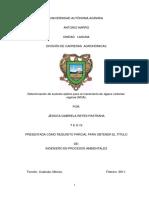JESSICA GABRIELA REYES PASTRANA.pdf
