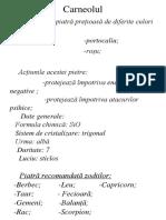 Carneolul-3.docx