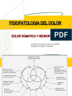 Fisiopatologia Del Dolor Ppt Share)