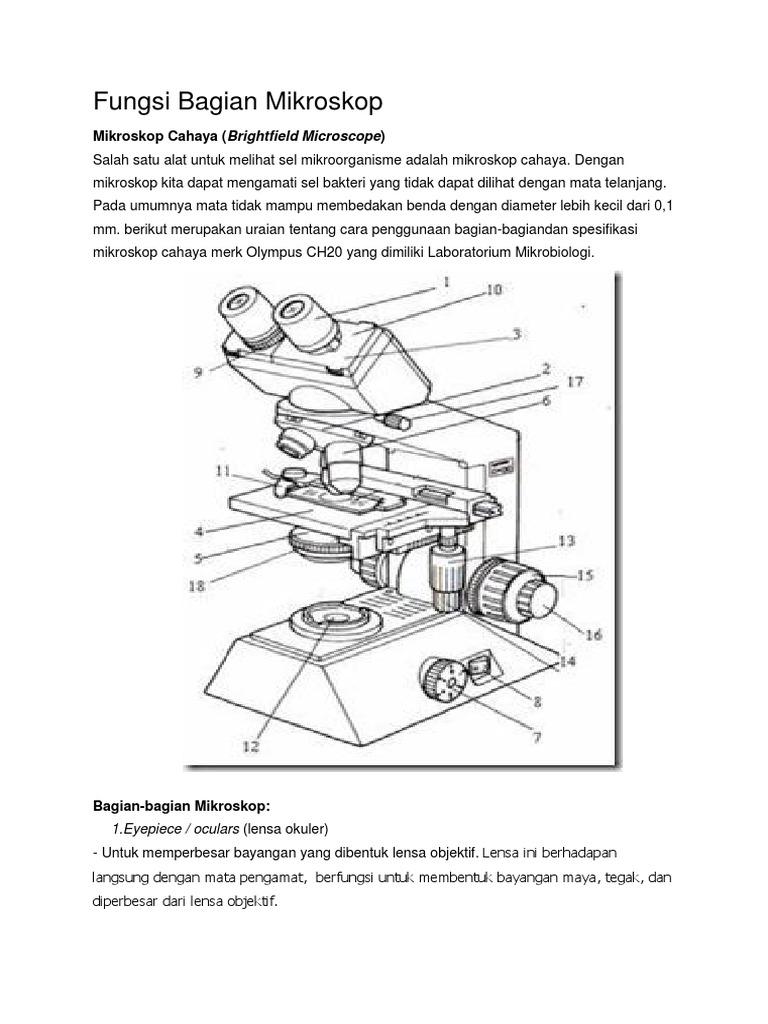 365233175 fungsi bagian mikroskop