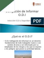 PPT D.a.S y Seguridad Minera (CONI)