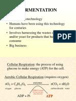 Fermentation Biotech