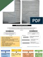 Alejandra Carlon Resumenes y Diagramas