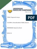 ESQUEMA DE ENSAYO.docx