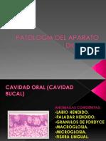 patologiadelaparatodigestivopartei-090708072304-phpapp01