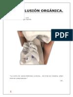OCLUSION ORGANICA.pptx.docx