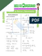 Problemas de Matrices y Determinantes Para Tercero de Secundaria (1)