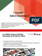 ley REP
