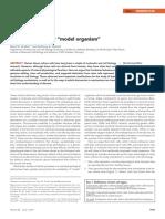genome editing tools in ipscs