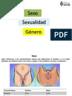 Sexo Sexualidad Genero