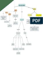Mapa Conceptual Psicología Criminal