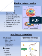 5.- Estructura y Morfología Bacteriana-2-35