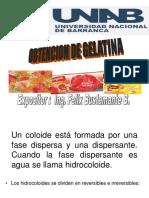 Gelatina-Clase.ppt