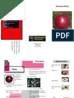 Jesse Lopez Apple Brochure