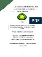 Mallma Palominio.pdf