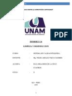 INF. LIMPIEZA Y DESINFECCION.docx