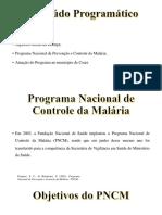 Seminario Malária.pptx