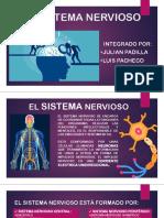 EL SISTEMA NERVIOSO.pptx