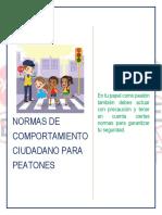 IMPLEMENTAR LAS NORMAS DE COMPORTAMIENTO CIUDADANAS.pdf