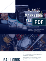 Plan de Marketing_ Sal Lobos Rev Final