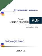 Cap X Palinomorfos Polen