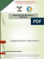 Organización empresarial