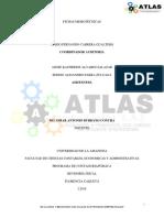 Fichas Memotecnicas Atlas Auditores (1)