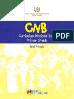 CNB de todos los niveles de Primaria