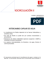Microcirculación II