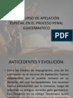 EL RECURSO DE APELACIÓN ESPECIAL