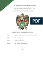 Informe Practica Quichua