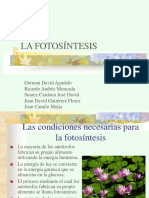 Fotosintesisjhvj
