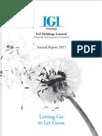 IGI Annual report 2018