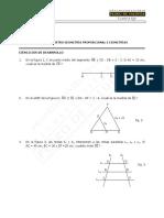 Módulo N° 5, Geometría Proporcional WEB 2016