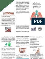 Esquema de Maduracion Pulmonar TRIPTICO