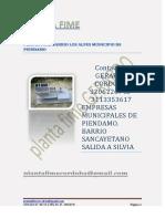 plantafime1-120413103241-phpapp01.pdf