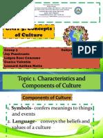Concepts of Culture Presentation
