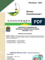 MONITORIA CONSTITUCIONAL.pptx