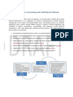 Public Sector Accounting and Auditing (2)