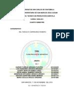 Trabajo-Especial-Aboneras.docx