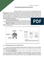 filtracion en gel cromatografia.pdf