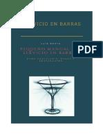 Introduccion Servicio en Barras