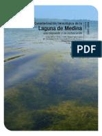 Memoria Informe Técnico Laguna de Medina