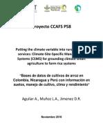 Base de Datos de Cultivos de Arroz en Tolima